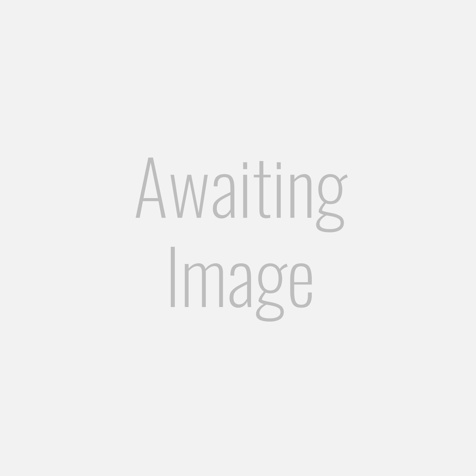 Turbo Restrictor Banjo Bolt - M12 x 1.5 - Astra VXR / Mazda 3 / Mazda 6